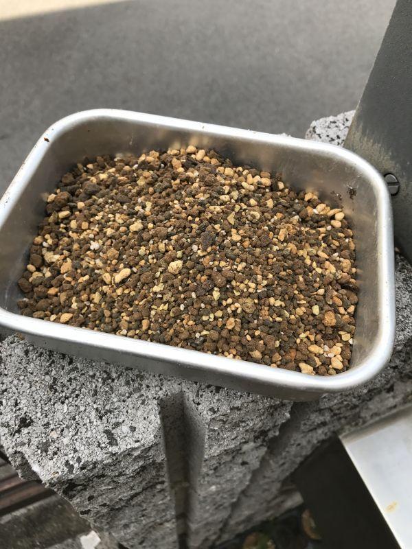 画像1: 多肉植物の土 2L